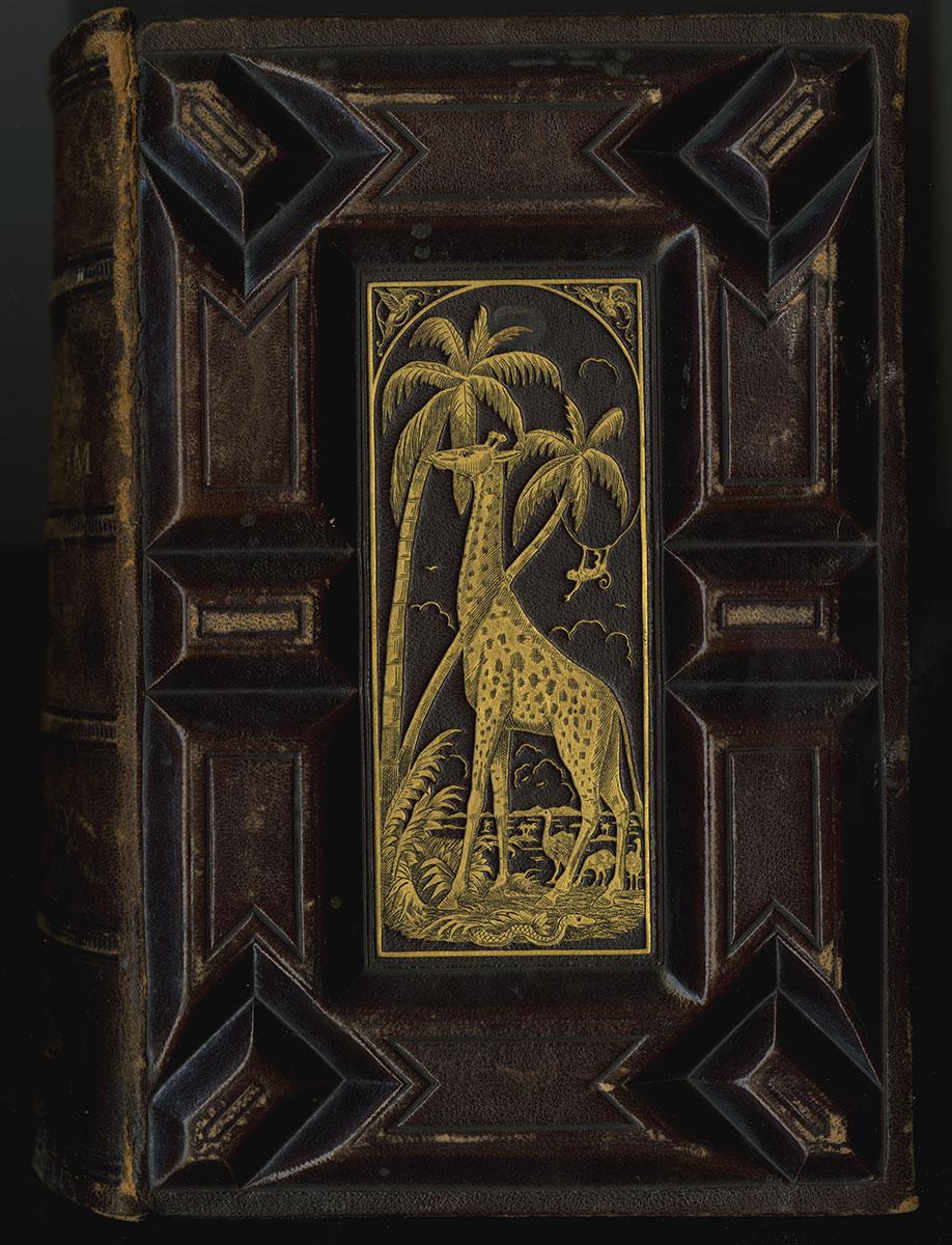 The Animal Kingdom (Philadelphia, 1880). Michael Zinman Binding Fund.