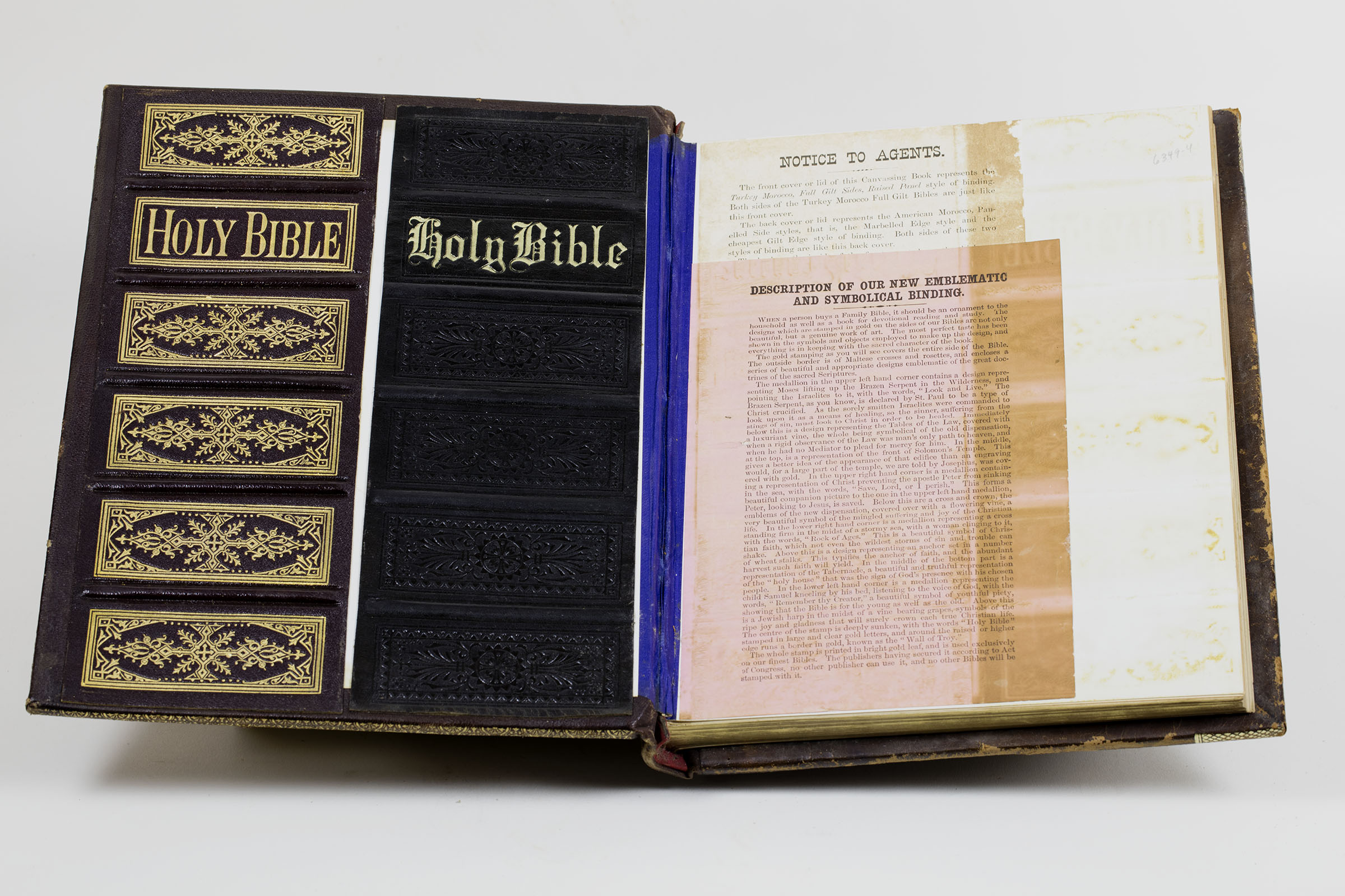 New Devotional and Explanatory Pictorial Family Bible (Philadelphia, 1879). Canvassing book. Michael Zinman Binding Collection.
